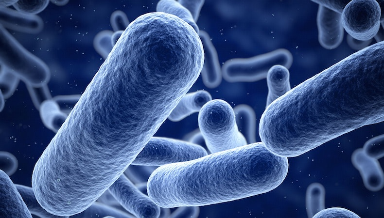 Antimicrobial-Resins.jpg